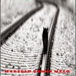 Livros - Novo livro: Estratégia dos vencidos