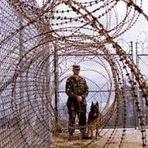 Internacional - Campos de Concentração Nos Estados Unidos Revelados Através de Licitação Pública