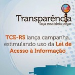 Eleições 2012 - Transparência - Faça essa ideia pegar: Uma campanha do TRE-RS
