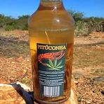 Opinião - Bebida a base de maconha é lançada no Brasil