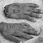 Mistérios - Psicopata canibal - Mentes diabólicas #2
