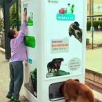 Animais - Máquina que alimenta cães e gatos de rua incentiva a reciclagem