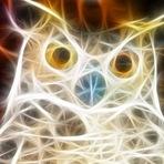 Coruja: o enigmático animal e seu significado nos sonhos