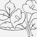 Outros - Desenhos para Pinturas em panos de prato